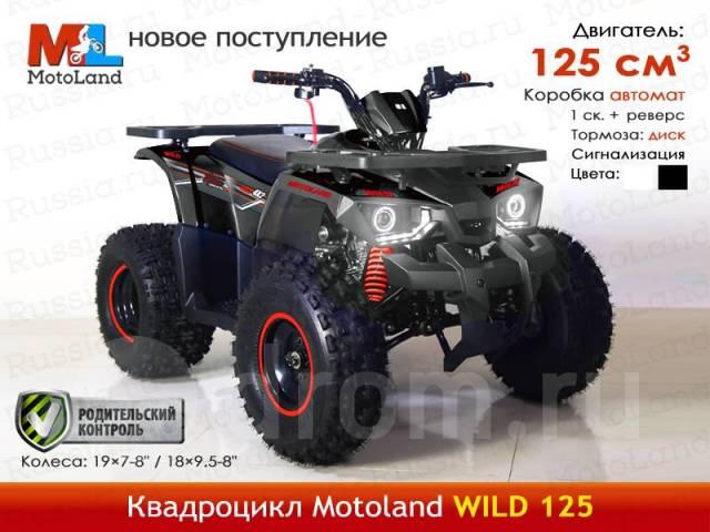 wild hunter автомат